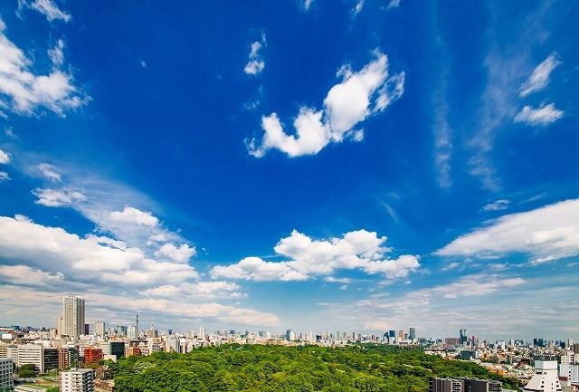 都市 緑 空 環境