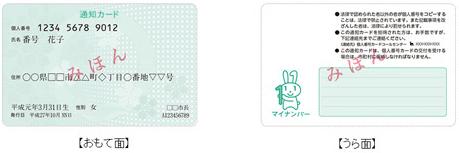 マイナンバー 通知カード