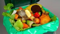 食品 ゴミ 廃棄