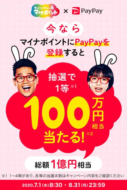 PayPay マイナポイント